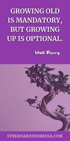 We all grow old. I am a very testimony to that. With the old age we stop growing up. However, that doesn't mean, we should stop grow. That includes our businesses. Do you want to grow yours? St. Bernardine Media will help a little guy. #waltdisney #waltdisneyquote #grow #thursdayquotes #thursdayquote #thursdayquotespiration #marketingthursday #thursdaymarketing #stbernardinemedia