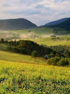 Zázrivá Homeland, Vineyard, Golf Courses, Pin Up, Hiking, In This Moment, Places, Nature, Wanderlust
