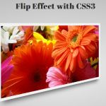 Image Flip Effect with Pure CSS 3D Transform