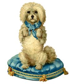 Darling Dog on Blue Tufted Cushion - The Graphics Fairy