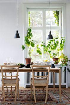 Norrgävel matbord + fin radiatorskjuler
