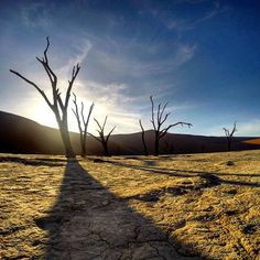 O deserto de areia de Sossusvlei, tem a paisagem morta de árvores secas num vale entre as dunas gigantes. O trajeto até lá é longo, mas o cenário é fotogênico. Qualquer clique vira arte. Dá pra perder umas 3h tranquilamente nesse passeio. São 80 dólares namibianos para entrar no parque, por pessoa, e mais 150 se você quiser pegar o transfer do estacionamento até as dunas. Dá uns 3km, mas vale a pena pagar. Em reais, é só dividir o valor por 4. 😎 🦁🐆🐃🐘🐊🐍 #mochilafrica #viagemprimata…
