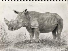 #Rhinoceros, #Nosorożec #Graphitepencil #pencil #drawing #rysunek #ołówek #grafit