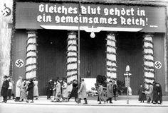 Appell an deutschnationale Gefühle anlässlich der Volksabstimmung. Mehr dazu hier: http://www.nachrichten.at/nachrichten/150jahre/tagespost/Die-Tragoedie-unserer-Geschichte;art171761,1688314 (Bild: Historisches Archiv ORF)