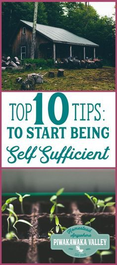 Being self sufficient isn't difficult! This homesteading quickstart guide will show you how you can start in your own backyard today!