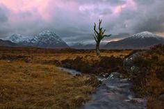 Photo of the month on my site.  ETIVE MOR (SCOTLAND)