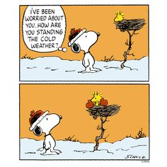 114 Best Winter Snoopy Images In 2019 Peanuts Snoopy Peanuts