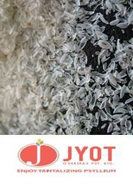 steam treated psyllium