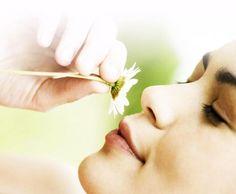 Coenzima Q10 – Beneficii Pentru Imunitate Floral, Medicine, Plant, Florals, Flower, Flowers