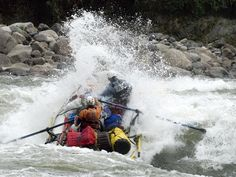 If Man Vs Wild type is your staple and adventure run in your veins, then try the mighty Siang or Brahmaputra for the rafting thrills it offers in Arunachal. You may even get to shake hands with a...
