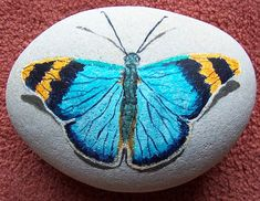painting on stone of a butterfly