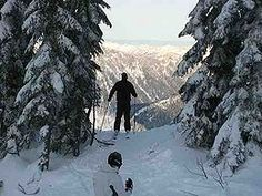 Stevens Pass coupons and discounts provide savings options for visitors on lift tickets, rentals, and lessons at the Washington ski area. To know more, visit Best Free Stuff Guide. http://www.bestfreestuffguide.com/Free_Stevens_Pass_Coupons