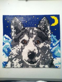 wolf - sold
