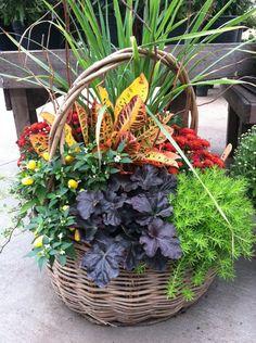 Colorful fall basket