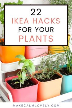 22 IKEA hacks for your plants, both inside and out.