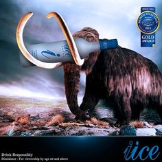Welcome to the IICE Age.....  www.iice-vodka.com  iice , best vodka india , vodka in india , party vodka
