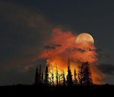 Moon Rise, Colorado