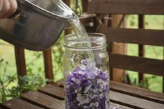 Soap - Infusing Violet Flowers -- Wild violets are everywhere today, 4/22/15 -- They bloom with daffodils, viburnum, and dandelions.