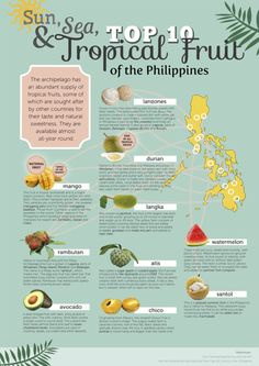 Top 10 Tropical Fruit of the Philippines poster Voyage Philippines, Philippines Culture, Philippines Food, Filipino Street Food, Thai Street Food, Indian Street Food, Cultura Filipina, Filipino Words, Filipino Culture