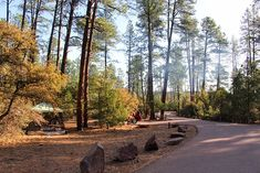 8 Top-Rated Campgrounds near Payson, Arizona Payson Arizona, Top Rated, Country Roads, Camping, Campsite, Campers, Rv Camping