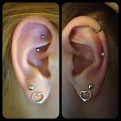 rook, tragus, cartilage, and lobes.