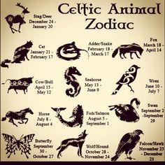 Zodiac of Celtic Animal Signs