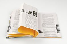 Paul Hekkert — Book design, 2006. French fold with interior color