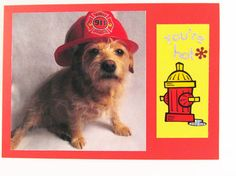Attraction Card Romance Card Fireman Dog Card by Lillyzcardz, $4.00