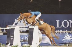 Luciana Diniz (POR) and Fit For Fun in Doha - now there's an equine athlete!