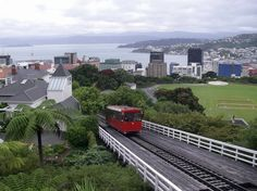 Wellington, New Zealand - My Grandfather served a mission for The Church of Jesus Christ of Latter-day Saints here in the 1910's. I would love to see this special place in my heart!