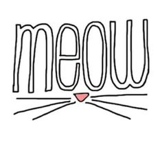 Find images and videos about cat, wallpaper and background on We Heart It - the app to get lost in what you love. Tumblr Wallpaper, Cool Wallpaper, Wallpaper Backgrounds, Iphone Wallpaper, Kitty Wallpaper, Crazy Cat Lady, Crazy Cats, Tumblr Transparents, Tumblr Png