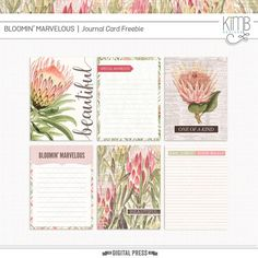 Quality DigiScrap Freebies: Bloomin' Marvelous journal cards freebie from Kim B Designs