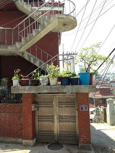 Jihye Shin / 다가구 주택 대문 수집 / 2013 12 11 /