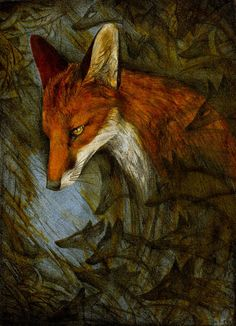 Fox's Wisdom Includes:  Shapeshifting,    Cleverness,    Observational skills,    Cunning,    Stealth,    Camouflage,  Feminine courage,    Invisibility,    Ability to observe unseen,    Persistence,    Gentleness,    Swiftness