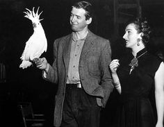 James Stewart and Valentina Cortese with the white cockatoo that plays the title role in Malaya