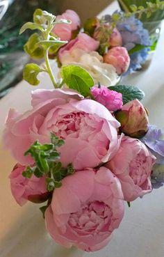 Pink peony wedding bouquet weddings pinterest peonies wedding flores peony flowermy flowerdahliapink flowersflower mightylinksfo