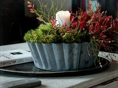 sammal, asetelma, sisustus, syksy Fall Decor, Autumn Decorations, Shabby, Container Gardening, Centerpieces, Make It Yourself, Interior, Florals, Plants