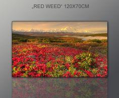 Wandbild auf echter Leinwand gerahmt (spring landscape 70x120cm) Bilder fertig gerahmt mit Keilrahmen riesig. Ausführung Kunstdruck auf Leinwand. Günstig inkl Rahmen