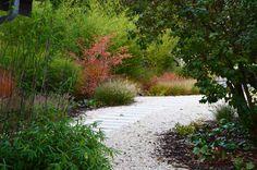 ATELIER PARTERO Atelier Partero zahradní architekti — Zahrady Zahrady