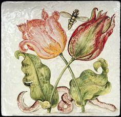 Cod. 10620   -  180,00€ Tulipani, insetti e verme di Joris Hoefnagel  fatto a mano una piastrella 40x40 cm disegno tratto da:Tulips, In...
