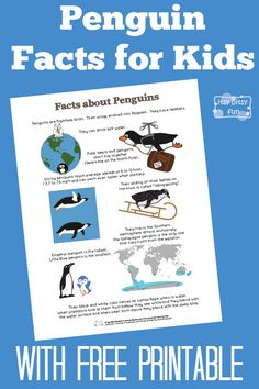 Fun Penguin Facts for Kids With Free Printables