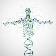 Illustration of Abstract model of man of DNA molecule vector art, clipart and stock vectors. Tatoo Dna, Human Dna, Human Body, Human Genome, Logo Inspiration, Career Inspiration, Dna Molecule, Adrenal Fatigue, Chronic Fatigue Syndrome