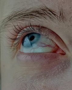 Eyes will see you. Beautiful Eyes Color, Pretty Eyes, Cool Eyes, Human Reference, Anatomy Reference, Photo Reference, Head Anatomy, Photographie Portrait Inspiration, Aesthetic Eyes
