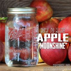When making apple moonshine the more acidic, sour varieties of apples are best (Winesap, McIntosh, and Jonathans all work great - but you can use any variety). Peach Moonshine, Homemade Moonshine, How To Make Moonshine, Moonshine Whiskey, Apple Pie Moonshine, Moonshine Still, Whiskey Recipes, Beer Recipes, Alcohol Recipes
