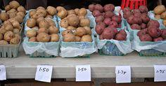 Farmer's Market in Village of Fairport, NY