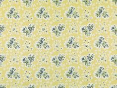 Pattern #21077 - 269   Tilton Fenwick Collection   Duralee Fabric by Duralee