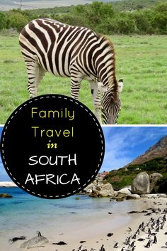 Our latest Travel Exchange series takes us to South Africa, where @travelbeachfamily tells us all about their family vacation. Surfing, culture, safari and good food are just some of the things that makes this country wonderful for family travel with the kids.