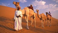 A scent of adventure in old Arabia: Deserts, the Magi and why Oman is nothing like Dubai Sultanate Of Oman, Luxury Tents, Camels, Travel Articles, Saudi Arabia, Dune, Family Travel, Fun Facts, Deserts