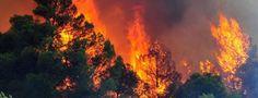 Στο «κόκκινο» για πυρκαγιά αύριο 7 νομοί της χώρας