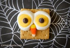 Cute Owl S'mores treats are a HOOT to make! Easy recipe for S'mores that look like owls! Fun food idea for Halloween, Thanksgiving or any birthday party. Halloween Snacks, Halloween Owl, Halloween Party, Halloween Countdown, Halloween Clothes, Healthy Halloween, Costume Halloween, Halloween Stuff, Owl Snacks